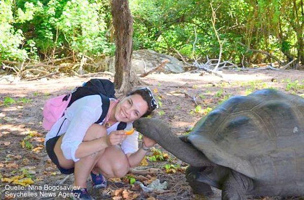 Begegnung mit der Aldabra Riesenschildkröte