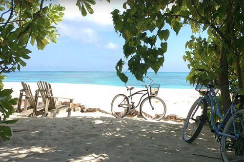 Seychellen Inselhüpfen zur Privatinsel Denis Island - mehr Info hier!