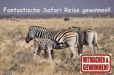 Safari Reisegewinnspiel