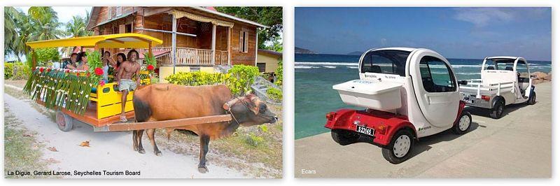 Insel La Digue Ochsenkarren und Elektro Autos
