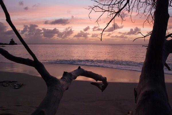 north island seychellen urlaub der luxusklasse. Black Bedroom Furniture Sets. Home Design Ideas
